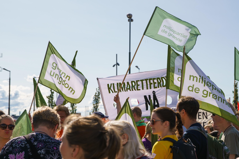 MDG'ere i i tog med MDG-flagg